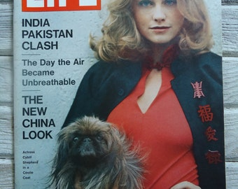 Vintage Cybill Shepherd - Vintage Dog art - Vintage Coolie Coat - Vintage Life Magazine - Vintage Fashion artwork, Retro Fashion, Wall decor