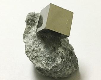 Pyrite Cube in Matrix - Beautiful, Natural Mineral Specimen!