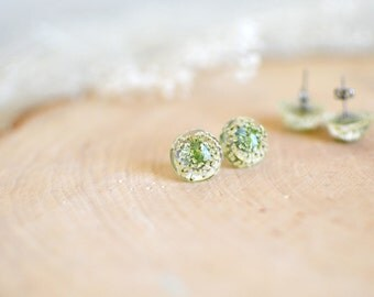 Real flower earrings, earring studs - surgical steel studs,  gift for a woman, Queen Anne's Lace gift under 30