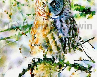 "Owl watercolor painting print: great gray owl watercolor print 11x14"", owl painting, owl decor, Christmas owl"