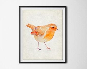 Robin Watercolor Art - Christmas Robin Garden Bird - Winter Bird Art Print - Chistmas Seasonal Holiday Home Decor - INSTANT DOWNLOAD #2519