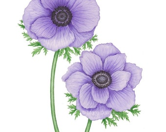 Flower art. Anemone watercolor art . Purple flowers wall art. Girls room decor. Garden nursery decor. Anemones painting. Flower illustration