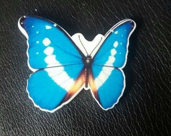 Blue butterfly themed themed needleminder  magnet