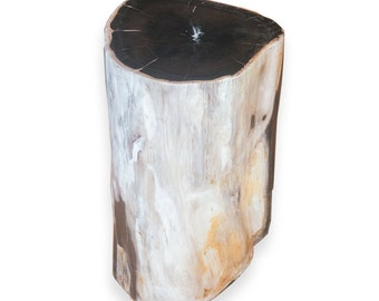 Petrified Wood Stool PF-2072