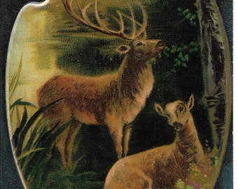 Embossed Antique Edwardian Unused Color Postcard, Artist Pallet, Edwardian Deer, Buck with Doe, Printed in Germany