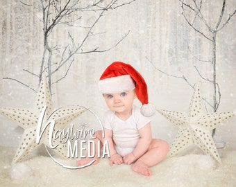 Baby, Child, Studio Photography Digital Backdrop Prop for Photographers - White Winter Christmas with Snow Trees and Stars - In 2 Sizes