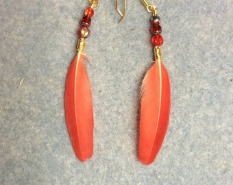 Bright red white-fronted Amazon parrot feather earrings adorned with small red Czech glass beads.