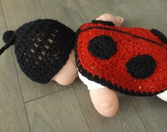 0-3 months Ladybug for photo to your photographer