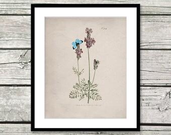 lavender art vintage flower prints lavender print lavender wall art flowers lavender vintage lavender poster flower art lavender gift gifts