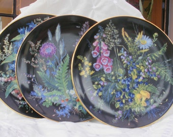 "China plates,  vintage, 3 limited edition Carl Schumann plates ,  ""Hidden Treasures"" hand painted, vintage porcelain, collectors items"