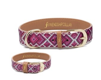 The Pedigree Princess - Dog FriendshipCollar and matching friendship bracelet