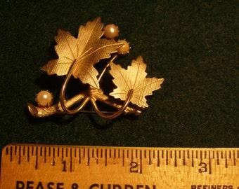 Sarah Cov. Oak Leaf Brooch(115)