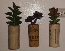 Wine Cork Planter (Set of 3)-Faux Plants-Succulents-Wine Corks-Cork Art-Kitchen Decor-Wine Lover-Magnets-Wine Cork Crafts-Cork Magnets