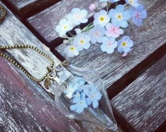 Forgetmenot necklace, Myosotis necklace, dried Forget me not pendant, remembrance necklace