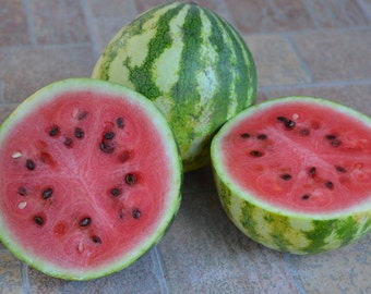 "Bulgarian watermelon ""Mitschurinka"", 10 Seeds"