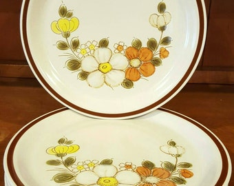 Woodhaven Collection Sunnybrook Dinnerware Plate Set