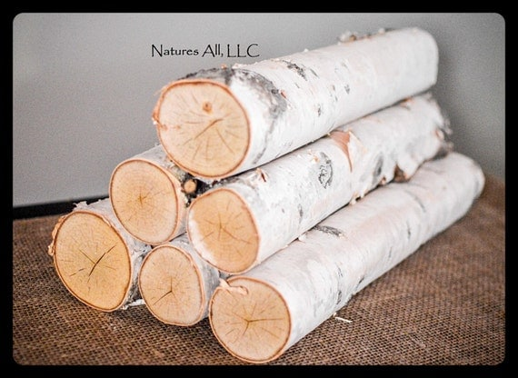 Decorative White Birch Fireplace Logs/6 Piece Set/2-3 Inch Diameters/16 Inch Lengths/ Home Décor/Shipping Included: Item# BL-4110