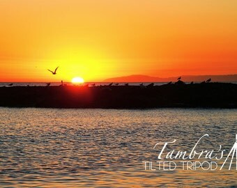 Laguna Beach Sunset 2