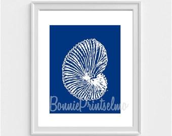 Seashell Print, Blue Seashell Art, Beach Wall Art, Apartment Decor, Marine Art Print, Beach Home Decor, Bathroom Decor, Housewarming Gift