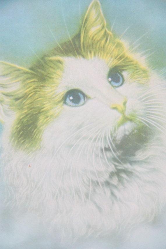 Vintage Cat Portrait Print Under Glass, Wooden Frame