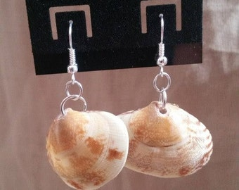 Natural Clam Shell Earrings