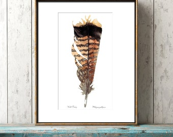 Watercolor Wild Turkey Feather Print