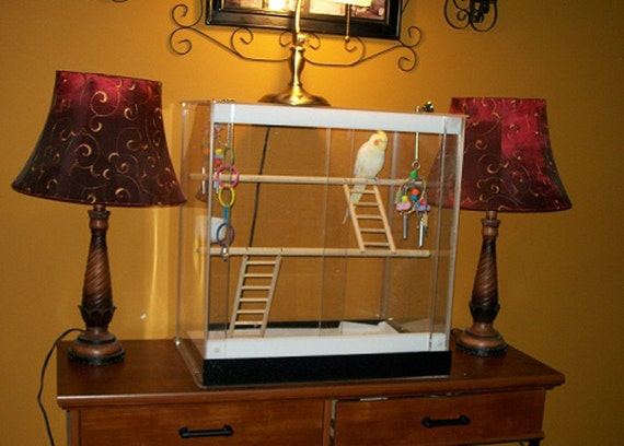 Acrylic Panels For Bird Cages – Articleblog info