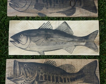 Hand Painted Fish Signs Wall Decor on Reclaimed Wood. Smallmouth, Striped and Largemouth Bass Art on Pallet boards. Bass Fishing Decor.