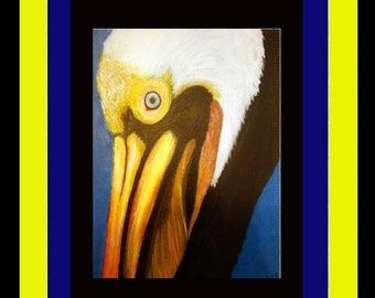 The Pelican; Alabama Fauna