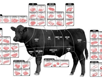 Beef Cuts Of Meat Diagram Poster Poster xl23beefcutsptr11041301