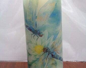 pair of dragonflys