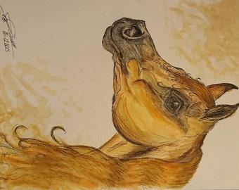 watercolor painting arabian horse head