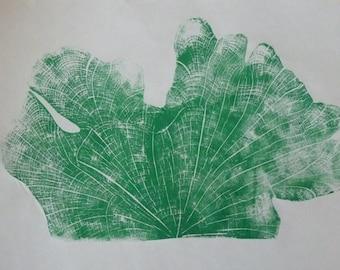 Cedar Green Half