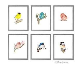 Bird watercolor, baby bird, bird nursery decor, bird nursery, watercolor print, watercolor painting, bird prints, set or 6 watercolor bird