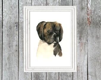 Pug, Boston Beagle Mix Pup Watercolour Print, Dog Portrait, Home Decor, puggle, custom dog art