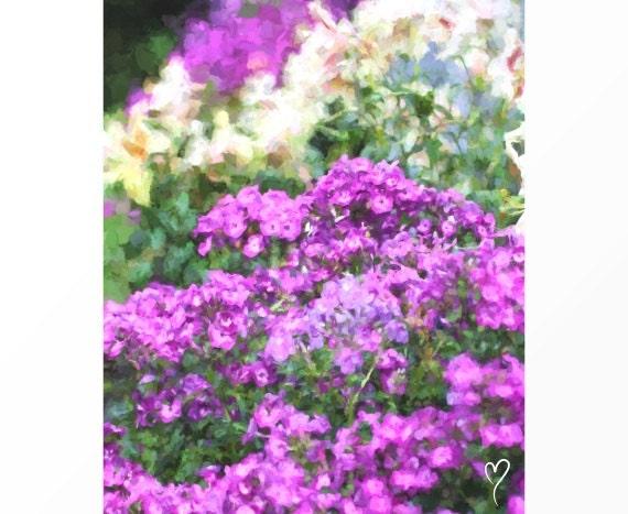"""Purple Flower Picture, Purple Wall Art, Purple Decor, Gift for Mom, Flower Wall Art, Purple Home Decor, """"Purple Flowers in Bloom"""""""