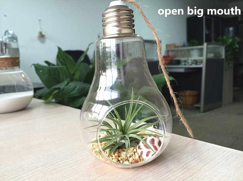 terrarium ampoule vide air plante suspendu jardin. Black Bedroom Furniture Sets. Home Design Ideas