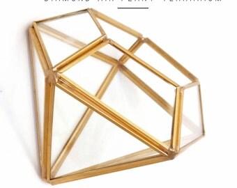 Air Plant Terrarium, Geometric Terrarium, Diamond Terrarium, Glass Terrarium, Birthday Gift, Airplants, Airplant Terrarium