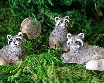 Miniature Raccoon Family - Set of 3