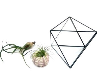 Geometric Terrarium / Octahedron Stained Glass / Glass Terrarium / Decoration / Modern Planter / Air plant Terrarium / Planter / Glass Box