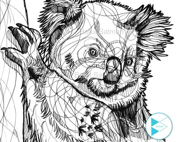 Line Drawing Koala : Abstract koala bear line drawing black pen hand