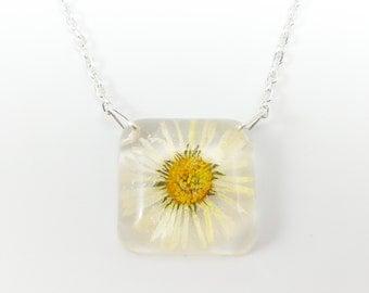 Blossom chain Daisy