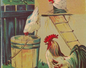 Vintage Easter Postcard - Best Easter Wishes 1909 Rooster and Hens Feeding in Barnyard