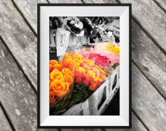 French Market Rose Photo black and white, Fine Art Photography, Instant Download, flower, Digital Download