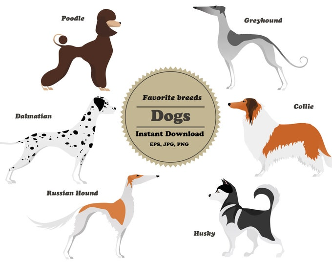 Dog clipart, Sticker, Scrapbooking, Instant Download, Collie, Husky, Dalmatian, Greyhound, Russian hound, Poodle