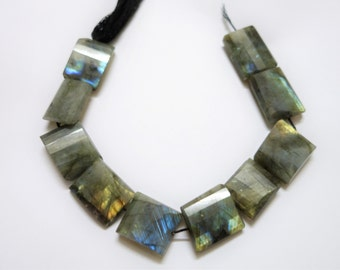 Labradorite Faceted Flat Nuggets (step cut)