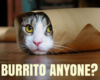 Cat Burrito # 13 - 8 x 10 - T Shirt Iron On Transfer