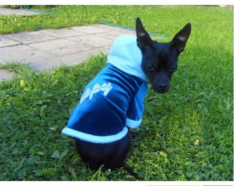 small dog  hooded jumper