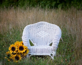 Sunflower Field Digital Backdrop