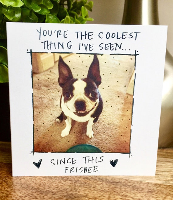You're the coolest Card, Funny Just Because card, Boston Terrier Card, unique love card, hand letter love note, dog love card